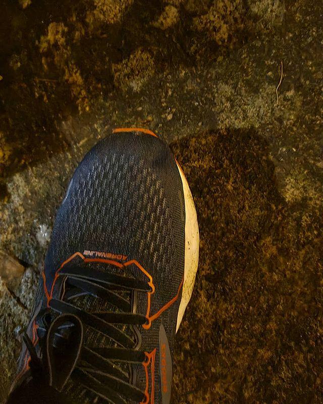 c25k : running shoe